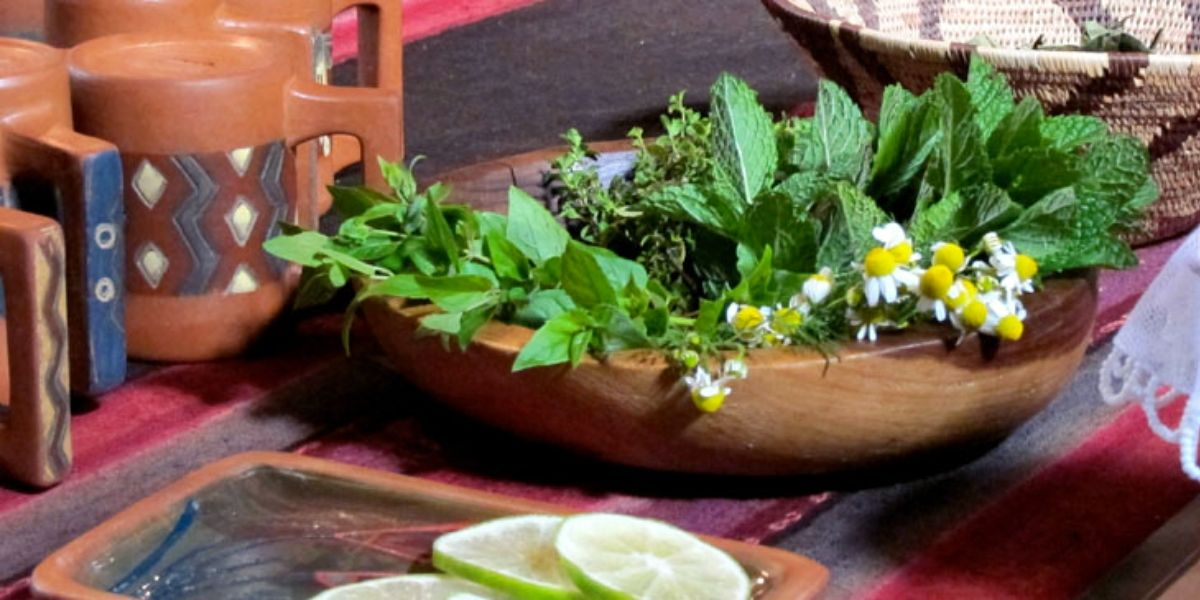 Peru sacred valley yoga wellness retreat Soul Nourish Retreats healing herbs